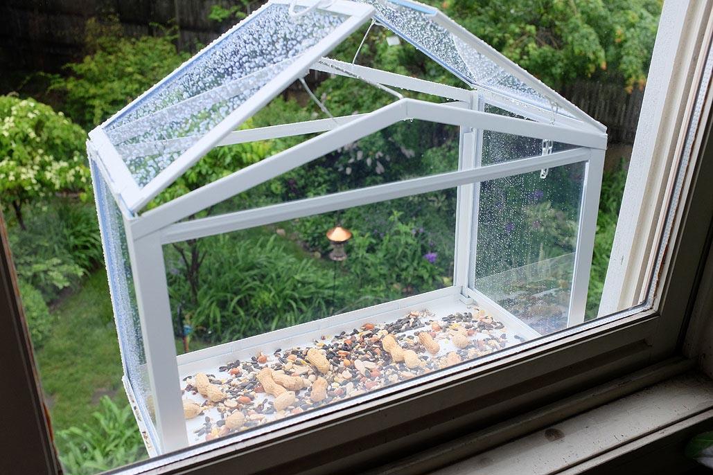 Window Mount Bird House