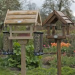 Wooden Bird Feeder Posts