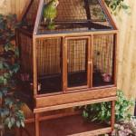 Wooden Cages for Birds Design