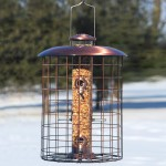 Woodlink Squirrel Proof Brushed Copper Seed Tube Bird Feeder