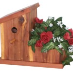 Wren Bird House Designs