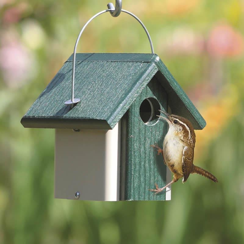 Wren Bird House Kits