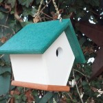 Wren Bird House Location