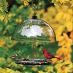 Wrought Iron Bird Feeder Station