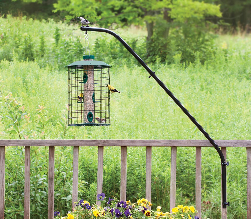 Bird house pole bracket birdcage design ideas House pole