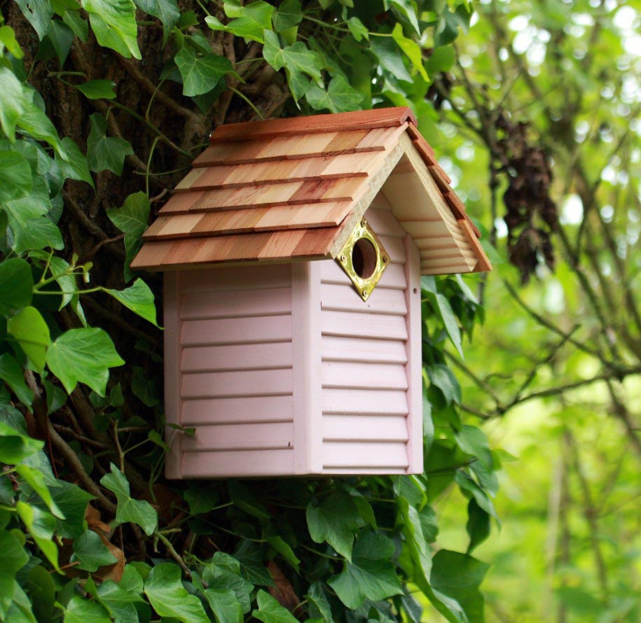 Bird House Pole Kit
