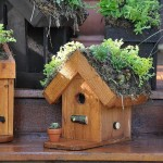 Bird Houses Decorating Ideas