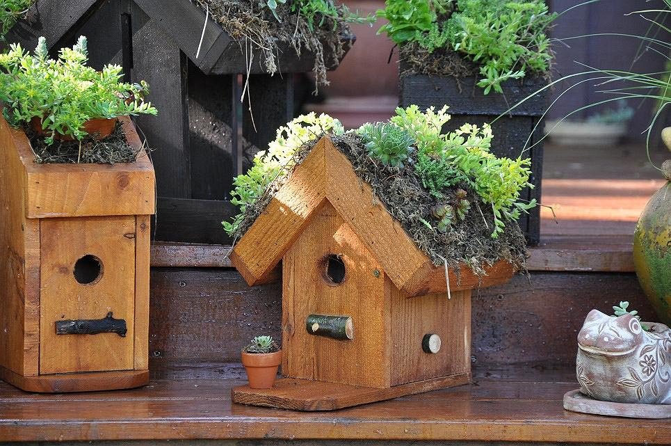 Bird Houses Decorating Ideas