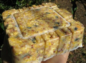 Bird Seed Cake Recipes