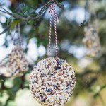 Bird Seed Ornament Recipe Without Gelatin