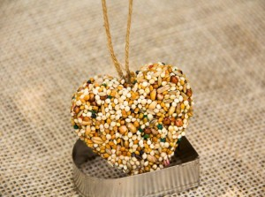 Bird Seed Ornaments DIY