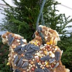 Bird Seed Ornaments Peanut Butter