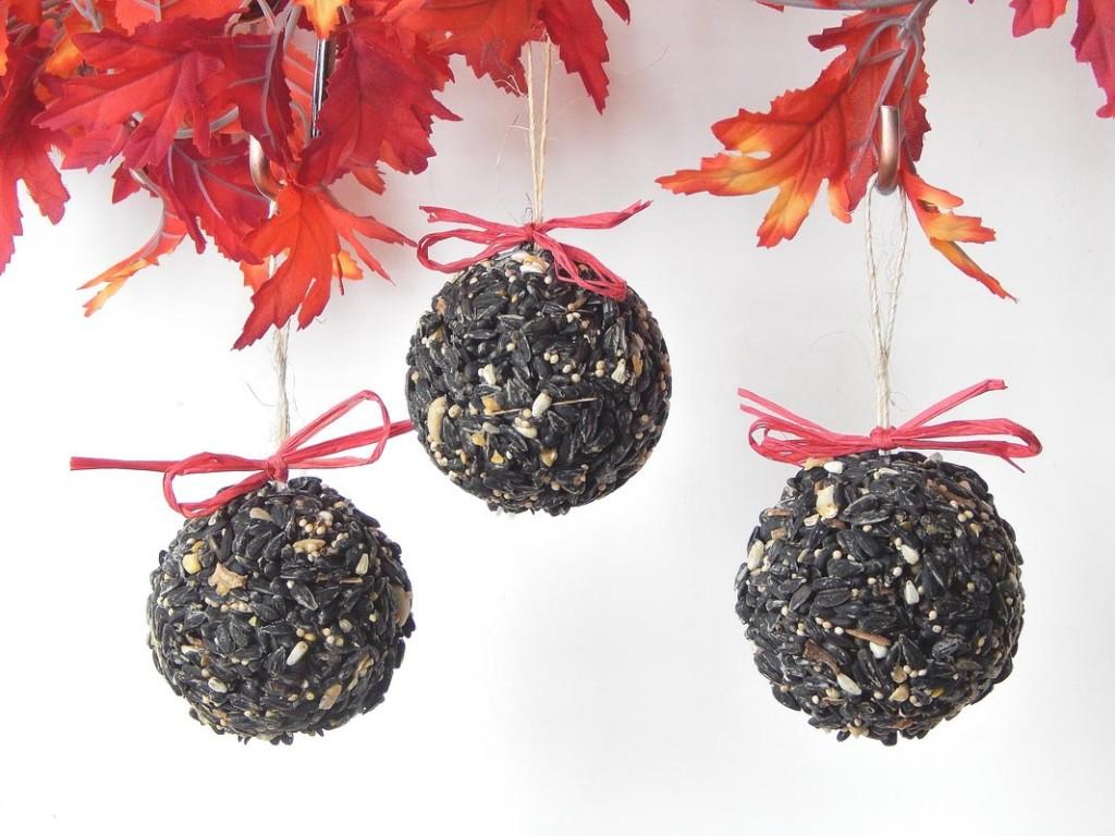 Bird Seed Wreath Craft