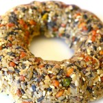 Bird Seed Wreath DIY