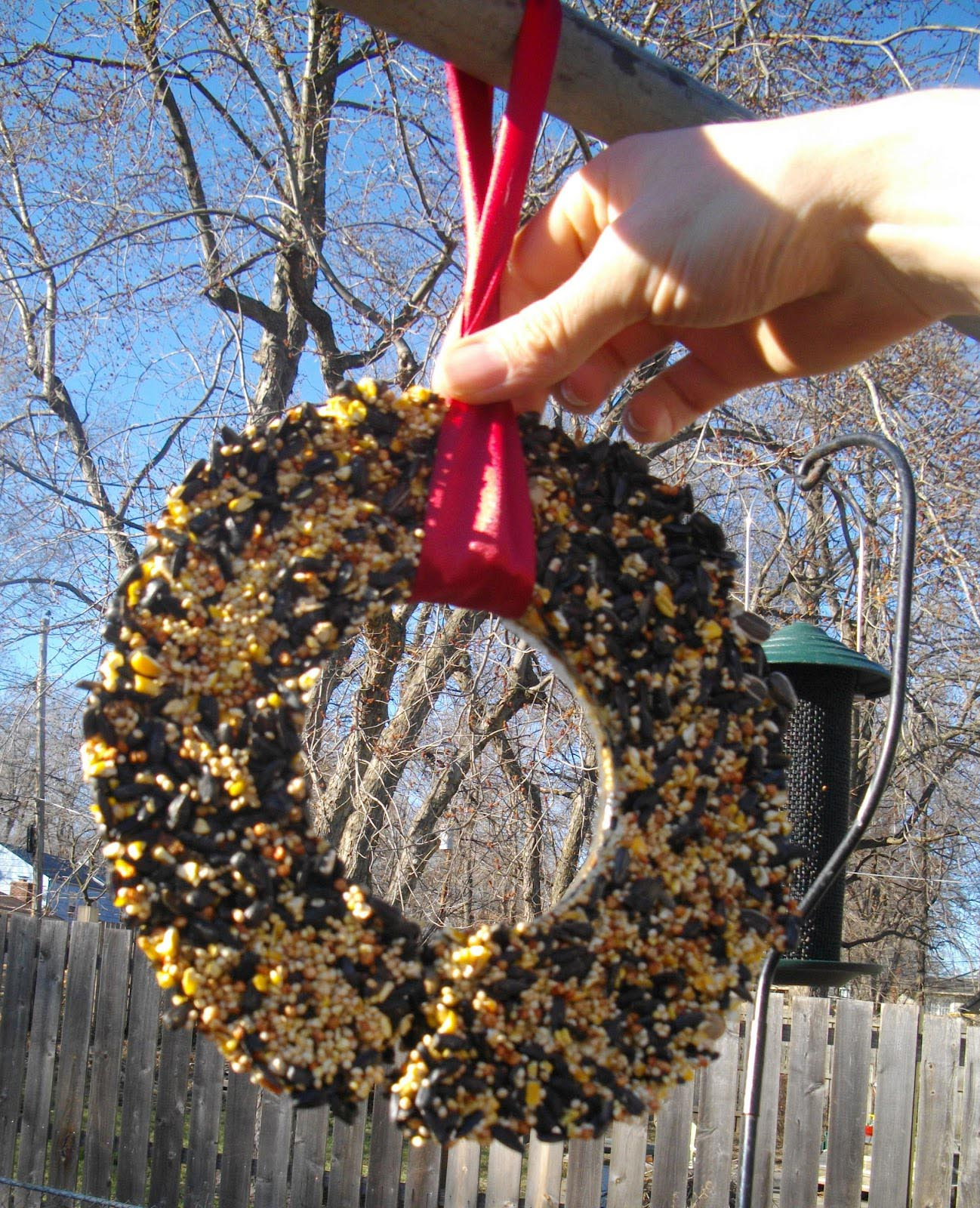 Bird Seed Wreath Recipe Gelatin