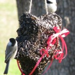 Bird Seed Wreaths Recipe