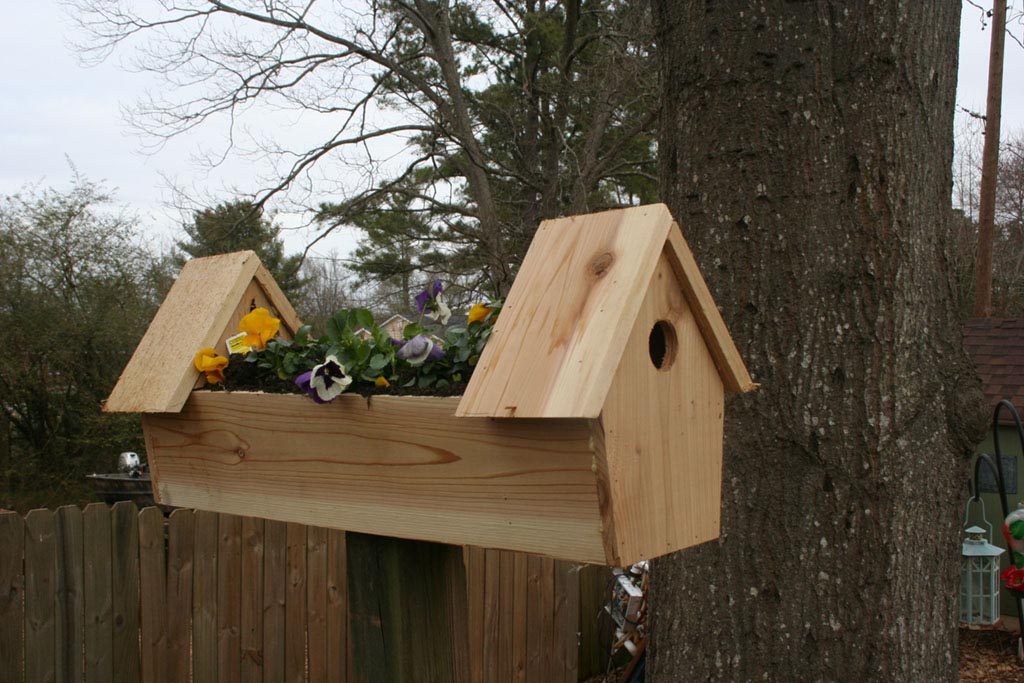 Building a Bird Houses