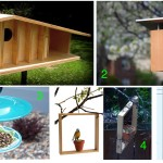 Buildin Bird Feeders and Houses