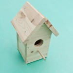 Building Bird House Plans