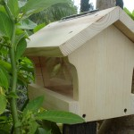 Chickadee Bird House Design