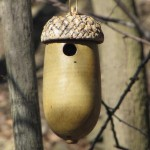 Chickadee Bird House Designs
