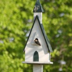 Chickadee Bird House Dimensions