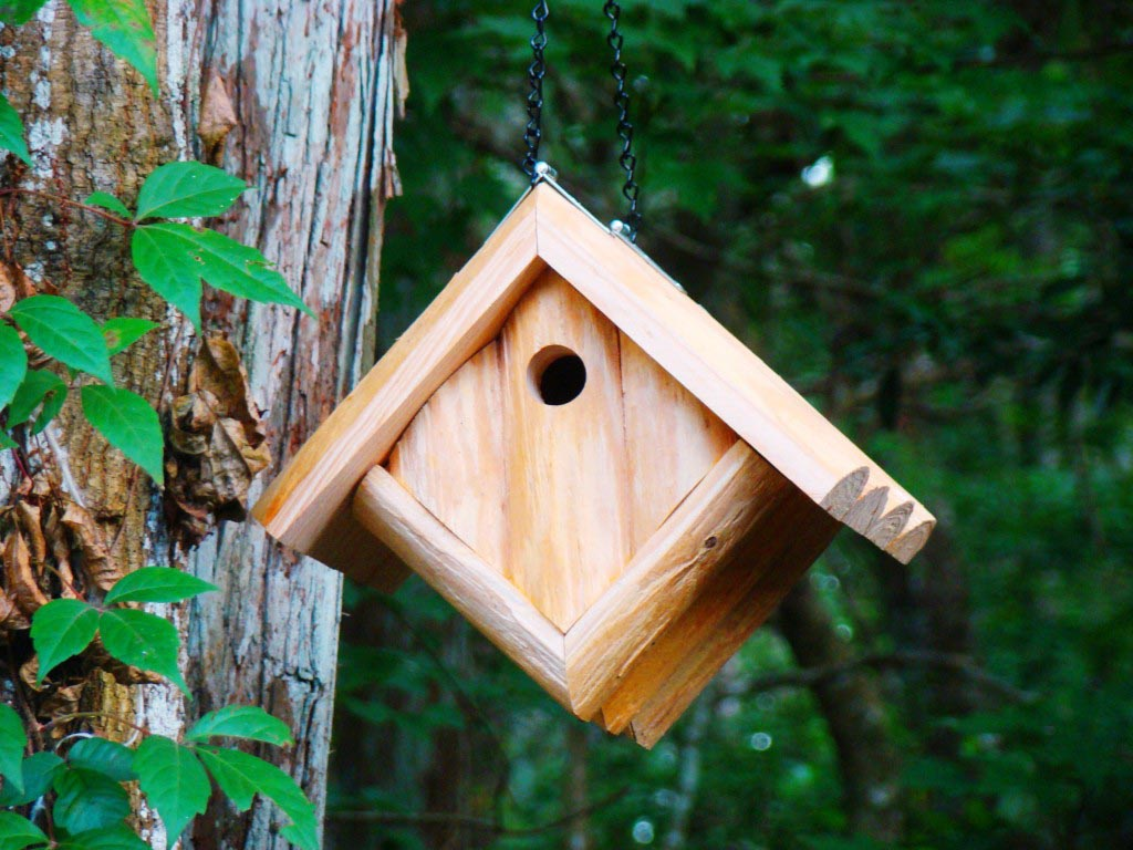 Chickadee Bird House Requirements