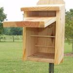 Chickadee Bird Houses Plans