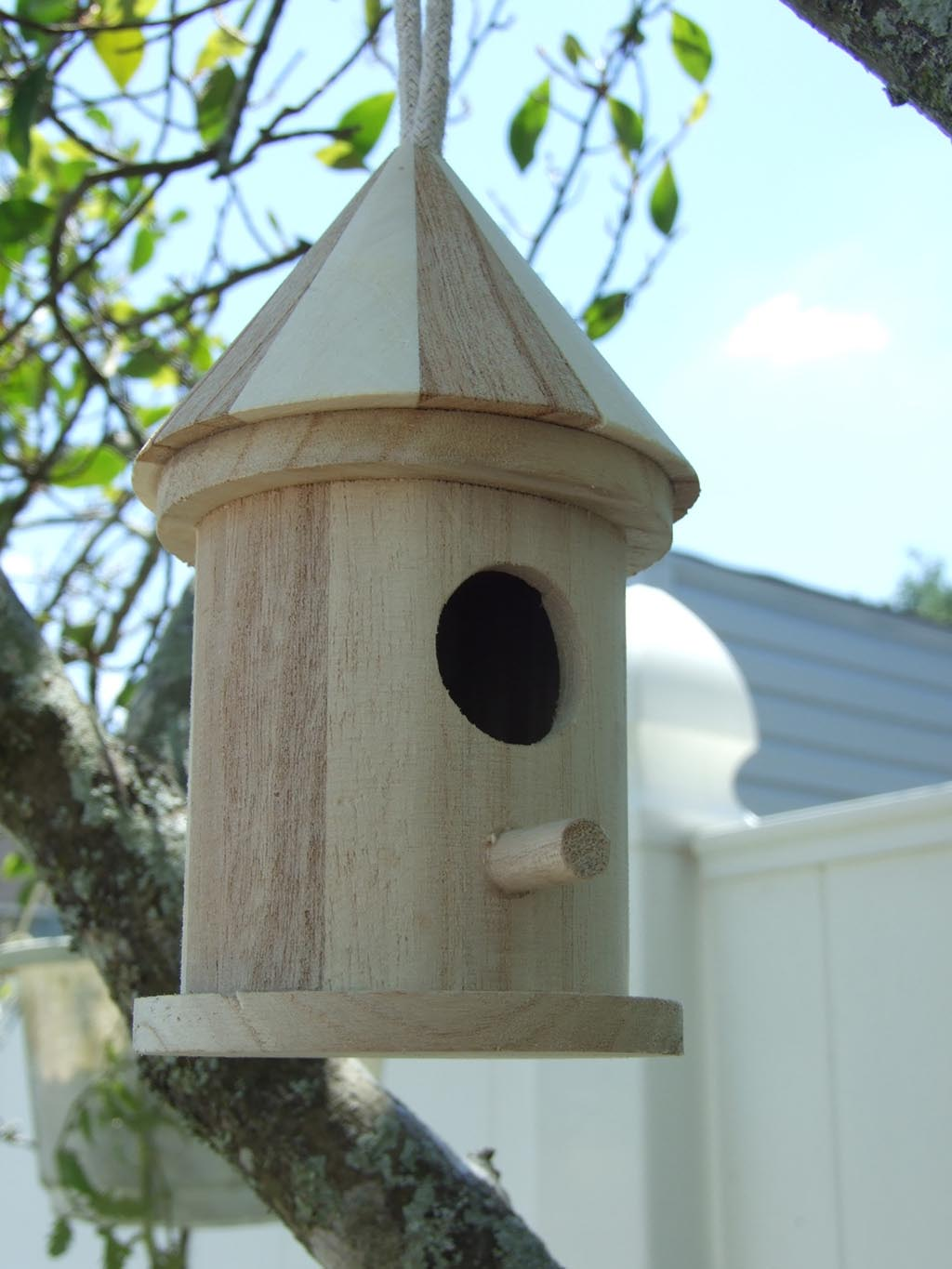 Cool Bird Houses Plans