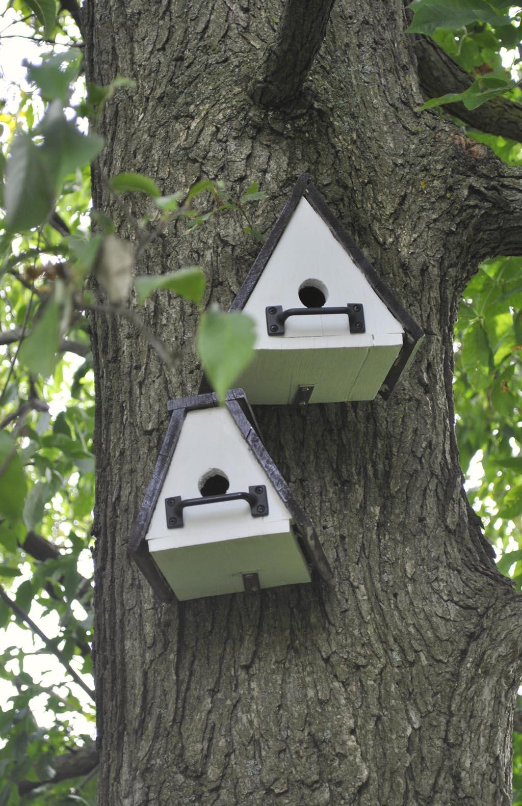 DIY Bird House Pole