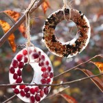 DIY Bird Seed Ornaments