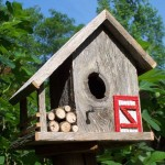 Fancy Bird House Designs