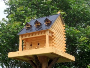 Fancy Bird Houses Designs