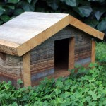 Finch Bird House Dimensions