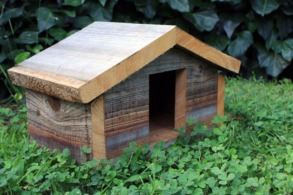 Finch Bird House Dimensions