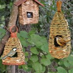 Finch Bird House Placement