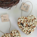 Heart Shaped Bird Seed Cakes