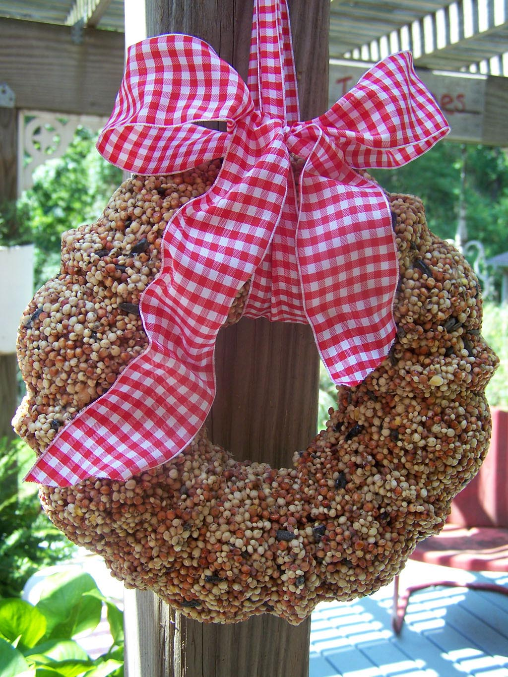 Homemade Bird Seed Wreath