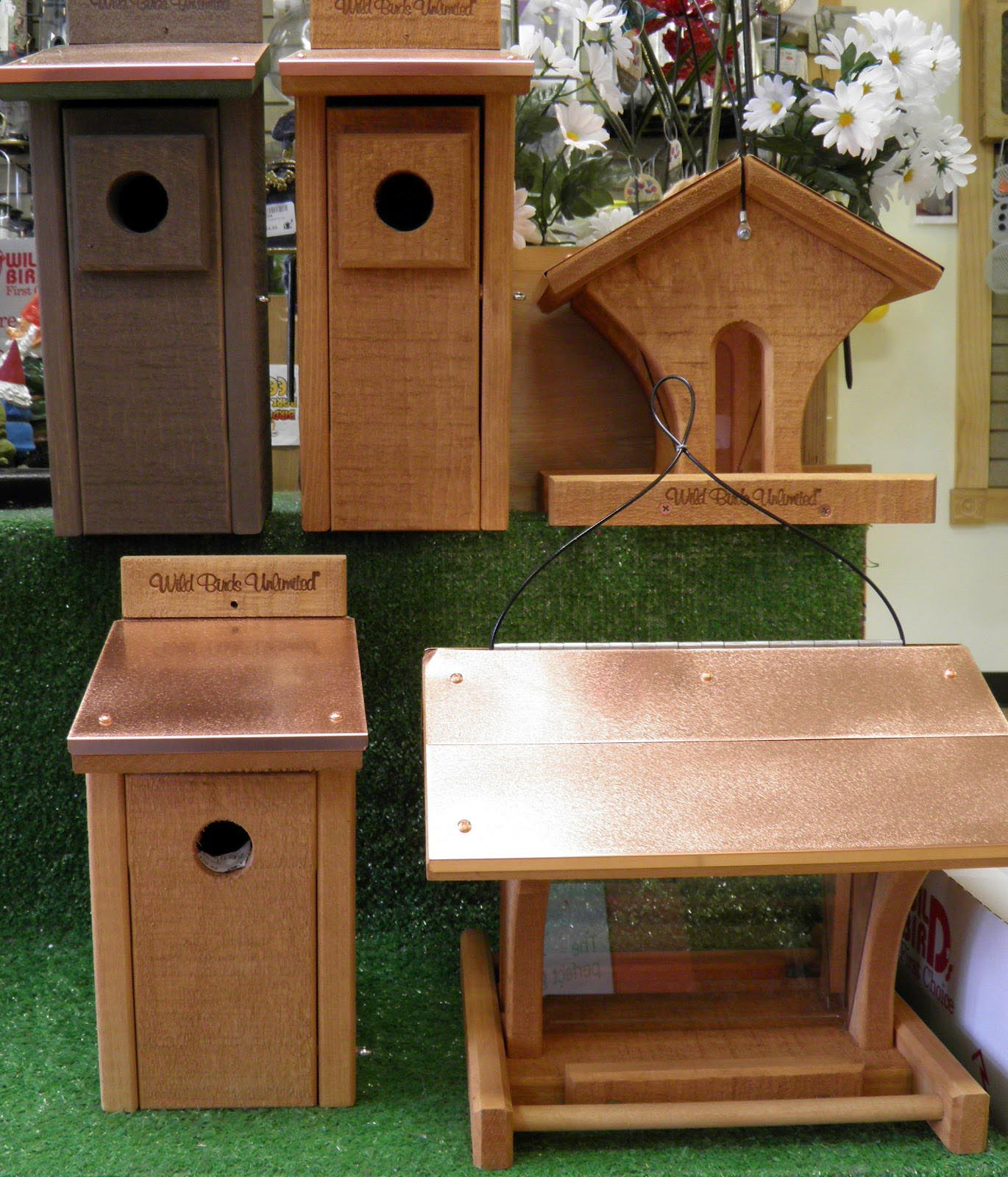 House Finch Bird Feeders