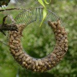 Make Bird Seed Wreaths