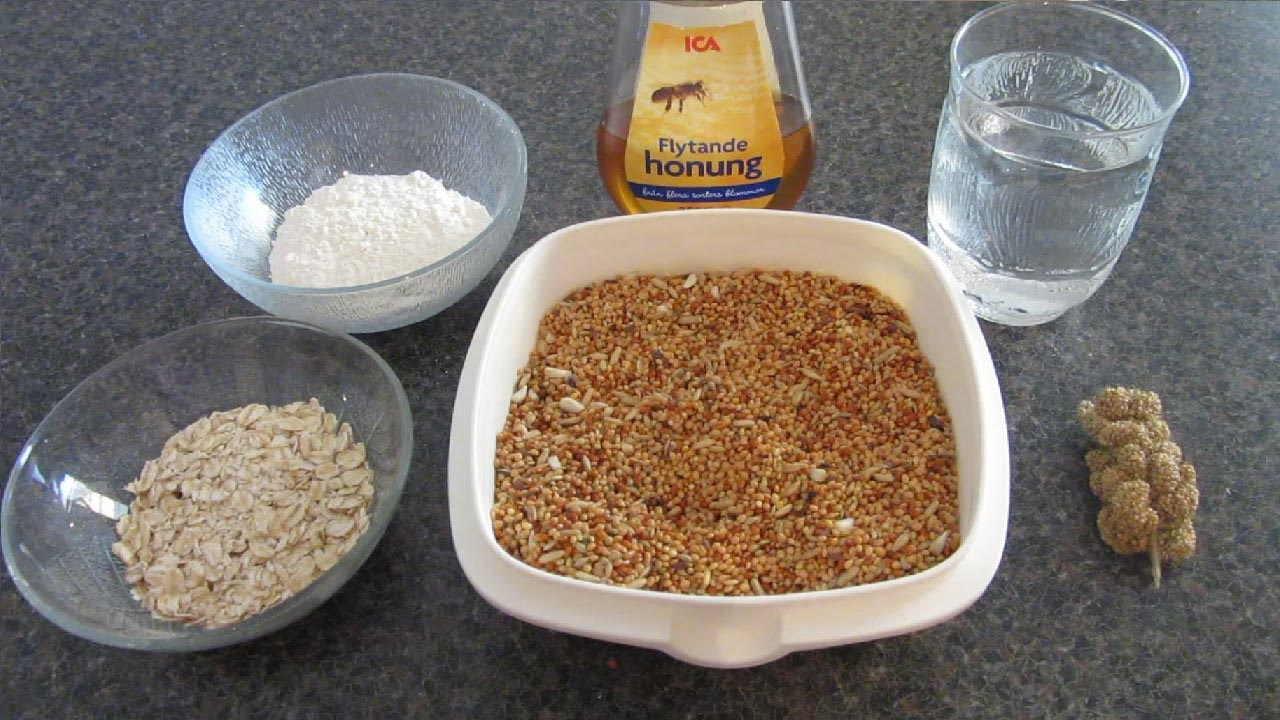 Make Your Own Bird Seed Cakes