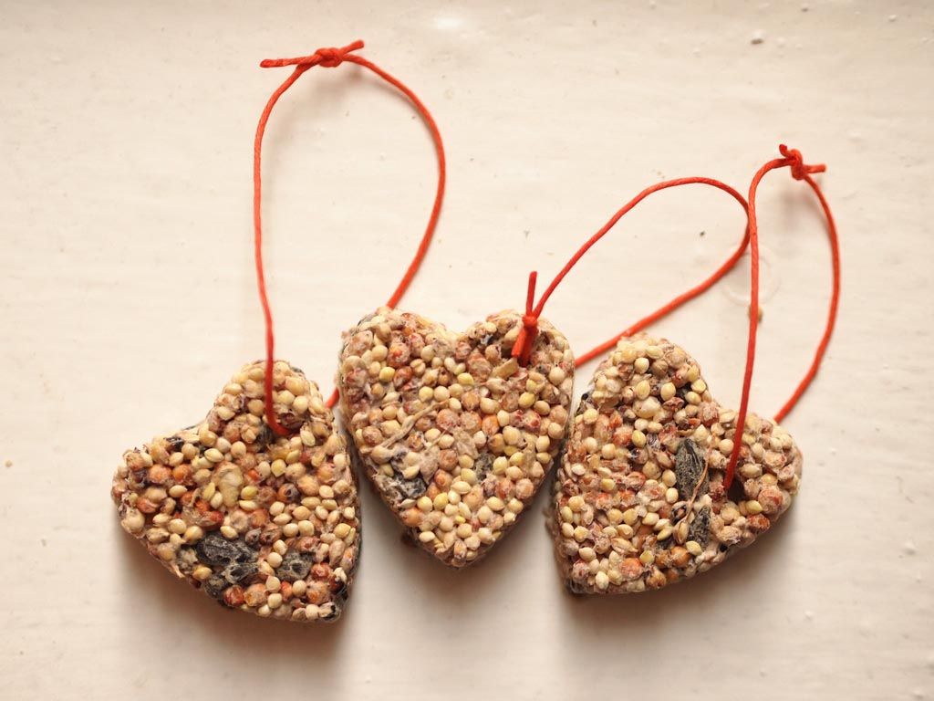 Making Bird Seed Ornaments