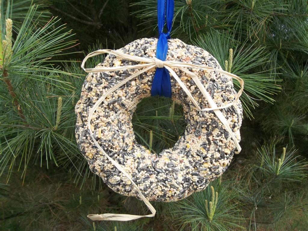 Making Bird Seed Wreaths