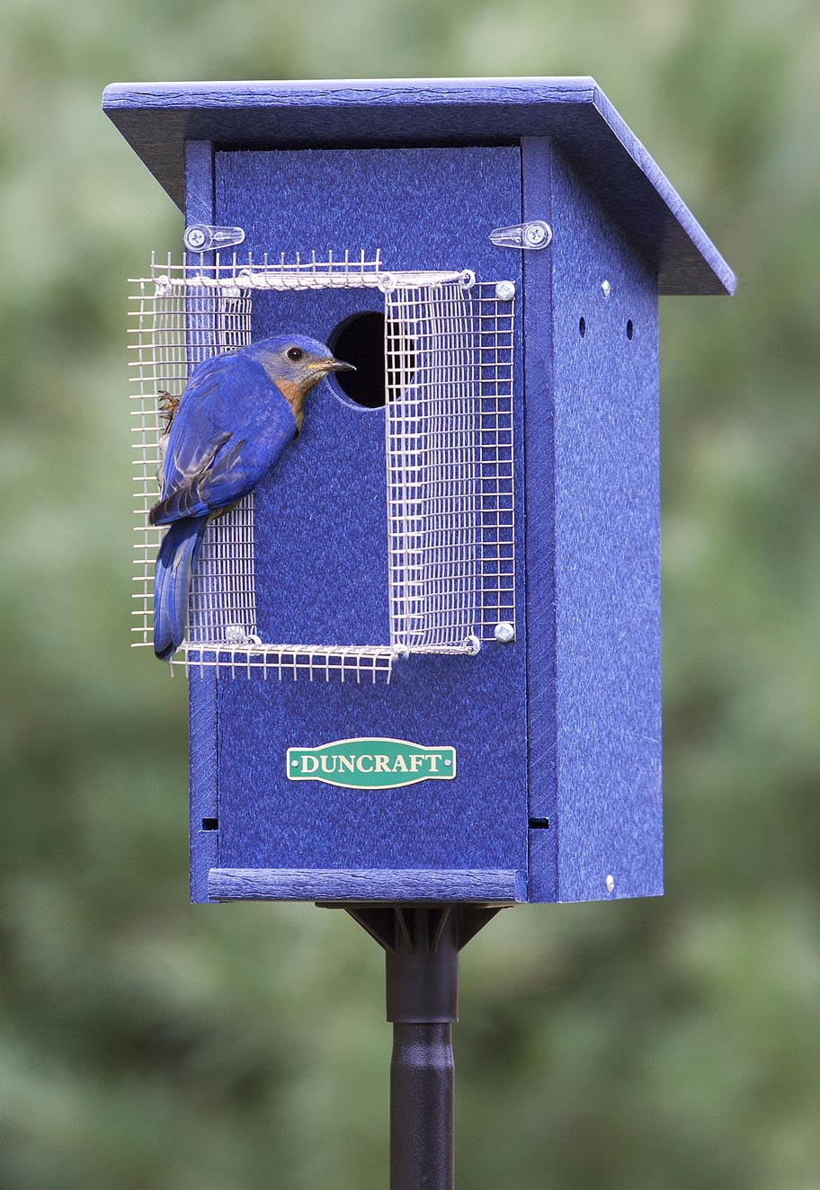 Painted Blue Bird Houses