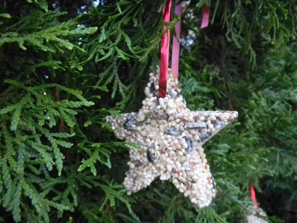 Peanut Butter Bird Seed Ornaments