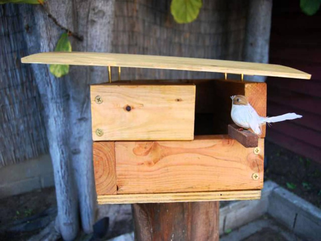 Plans for Building Bird Houses