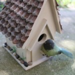 Plans to Build a Bird House