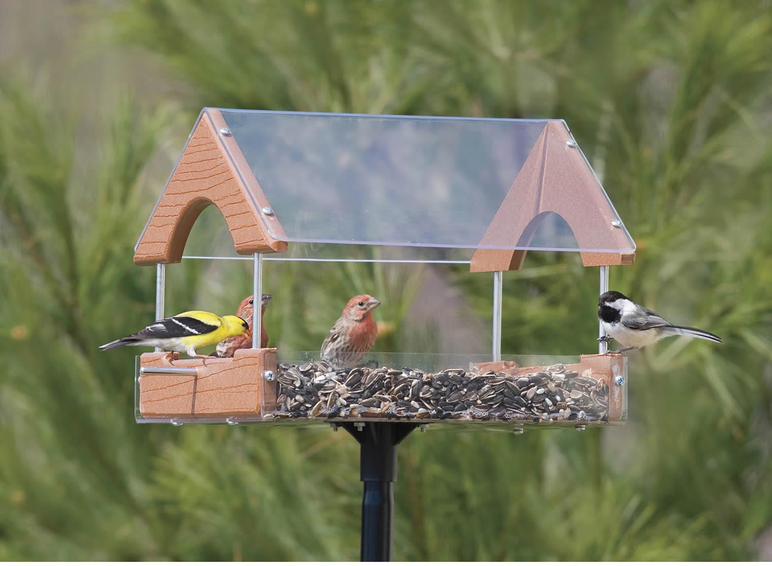 Pole Mount for Bird House