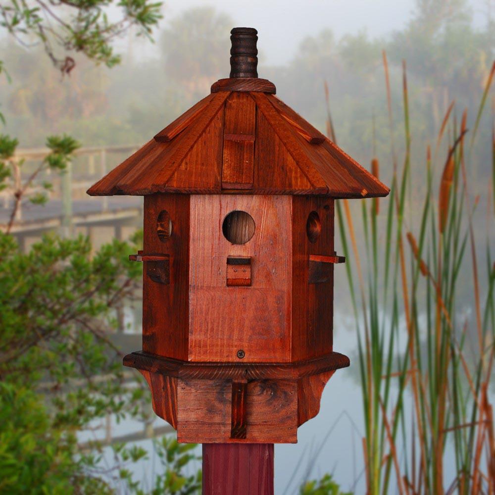 Red House Finch Bird