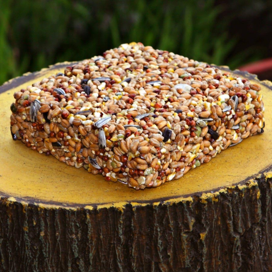 Wild Bird Seed Cakes